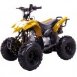 COOLSTER 110-B | 110cc FULL AUTO SPORT